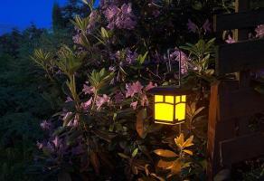 Ładne i tanie lampy do ogrodu - jakie oświetlenie ogrodowe wybrać?