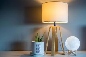 Lampy inspirowane naturą