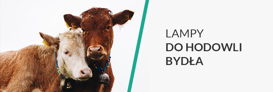 Lampy do hodowli bydła