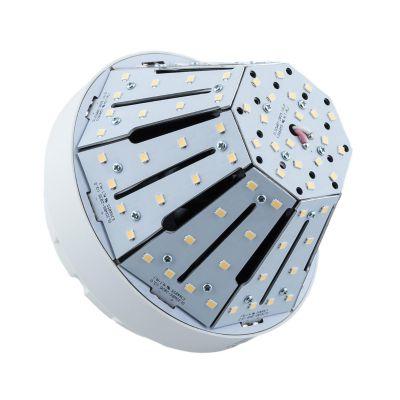 Żarówka LED Greenie Stożkowa 20W E27