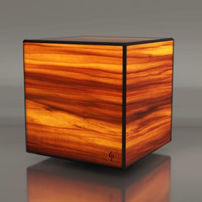 Lampa LED Wooden DICE Tulip RGBW Wifi-Control