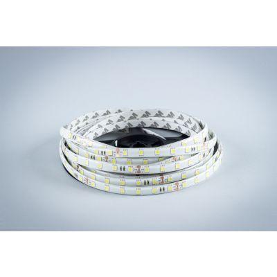 Taśma LED Greenie 24V 1m diody 5050SMD 14.4W/mb wodoodporna IP65