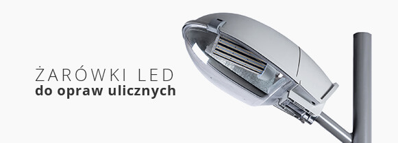 Żarówki LED do opraw ulicznych
